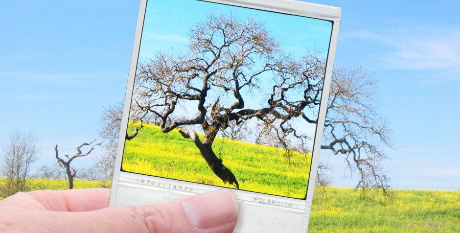 Jak powstaje zdjęcie cyfrowe?